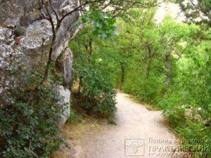 Фрагмент Царской Тропы, Ливадия, Крым