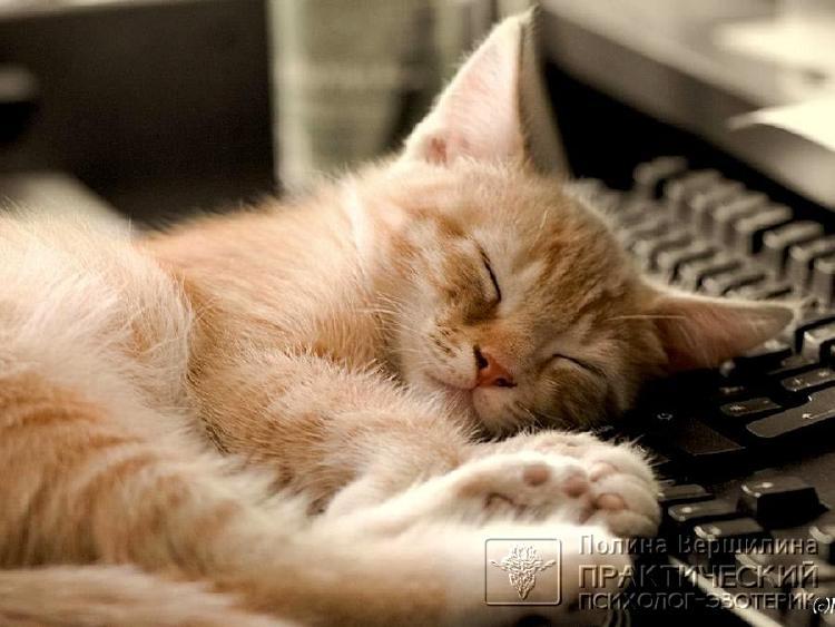Как правильно отдыхать после работы