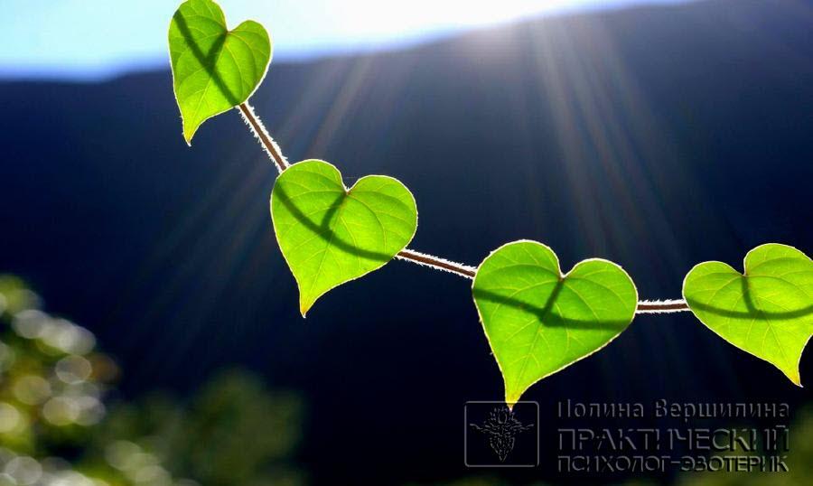 Трансцендентная Утренняя Медитация - Анахата